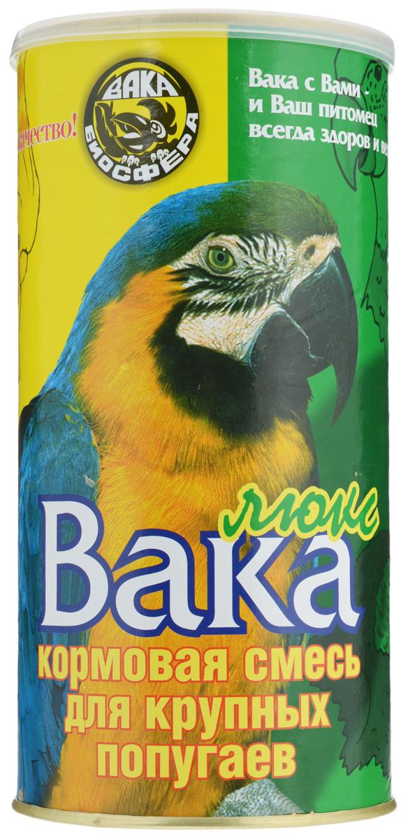 Продам птенцов попугаев жако бурохвостых и краснохвостых от 14500 от 4 мес , внимание молодые до 1 года жако имеют